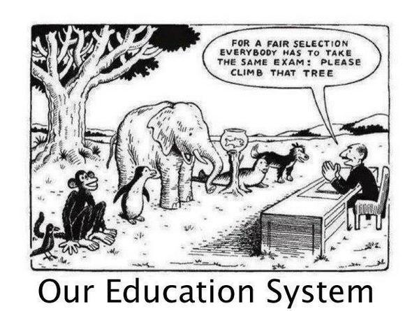 "Image showing jungle animals, including a monkey, bird, elephant, fish and hyena, standing in front of an exam invigilator. The invigilator says ""For a fair selection everybody has to take the same exam: please climb that tree""."